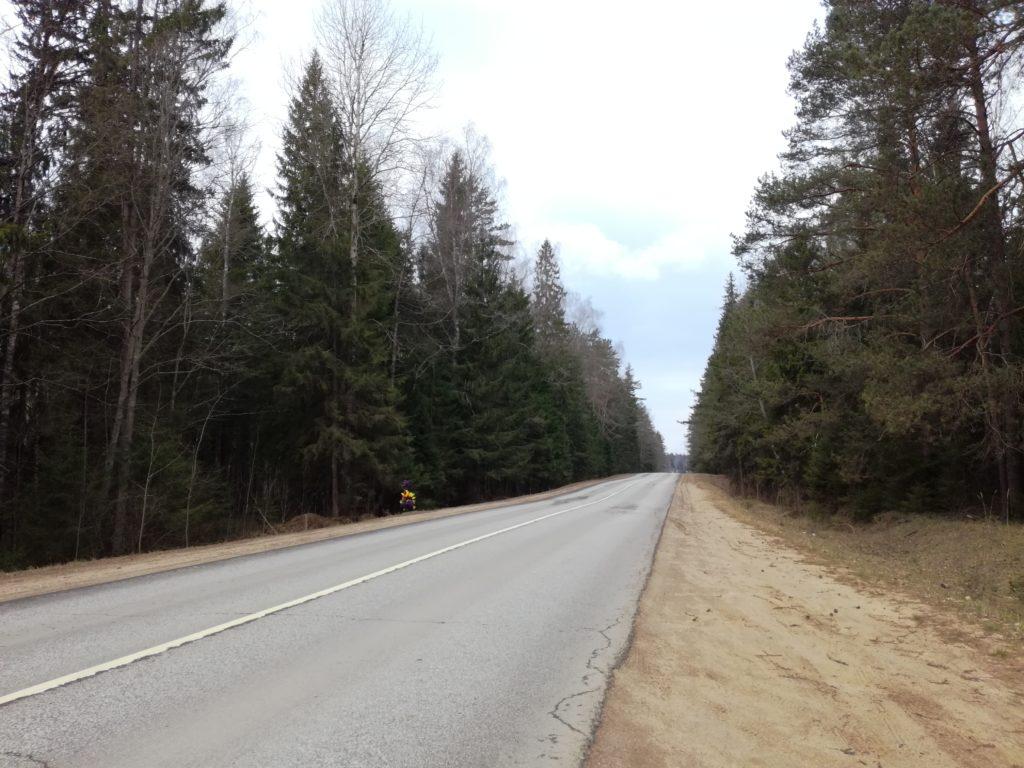 лесная дорога на подъезде к селу Воздвиженское-Круг