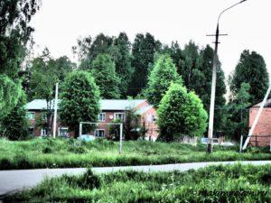 Выголь в Клинском районе
