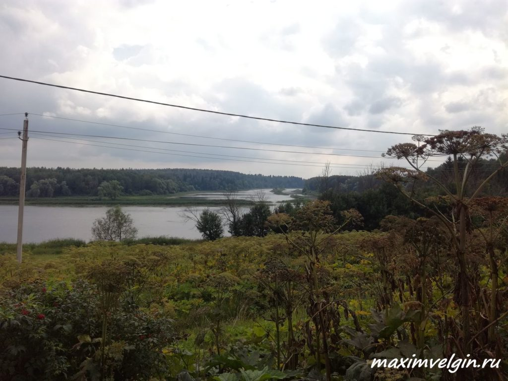 Притоки реки Истра 1