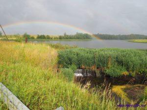 Прогулка выходного дня — Рыболовная база Львово