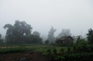 Таинственная деревня Черный поток и ее загадки