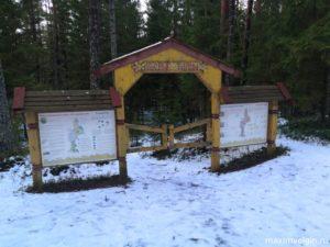 Эко тропа Лесные Тайны и источник Соколовские Ключи